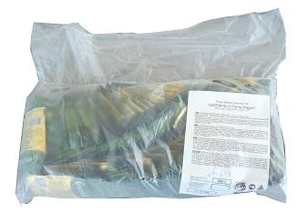 GREENFIELD Flying Dragon green tea, 2 g x 100 pcs
