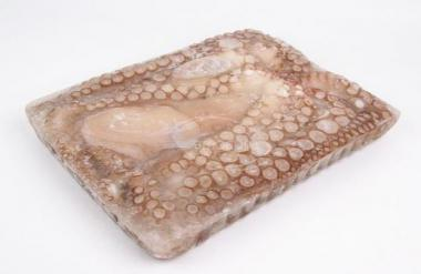 Octopus whole, cleaned, raw,3-4 kg, 5 % glaze, ~3,5 kg